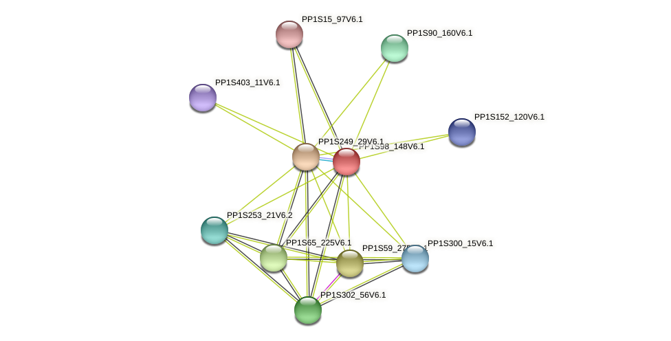 PP1S98_148V6.1 protein (Physcomitrella patens) - STRING interaction network