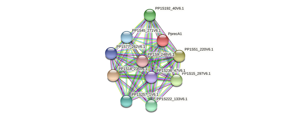 PP1S98_157V6.2 protein (Physcomitrella patens) - STRING interaction network
