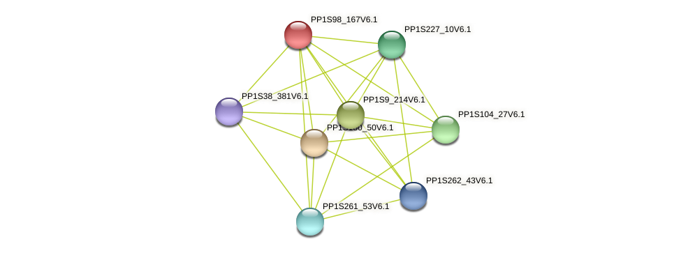 PP1S98_167V6.1 protein (Physcomitrella patens) - STRING interaction network