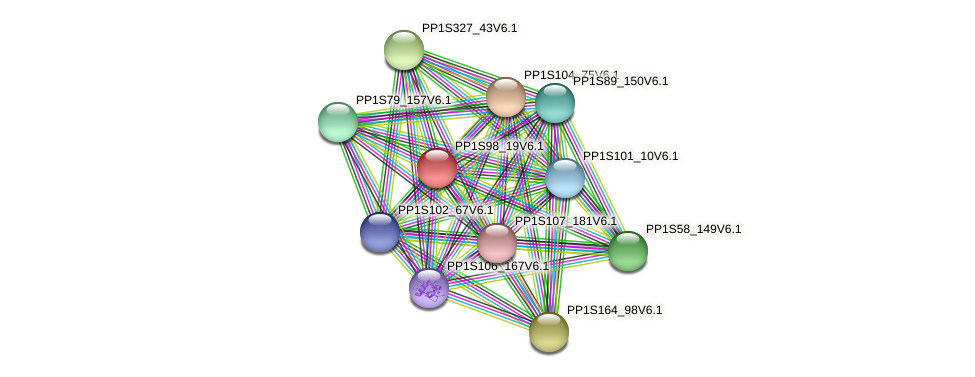 PP1S98_19V6.1 protein (Physcomitrella patens) - STRING interaction network