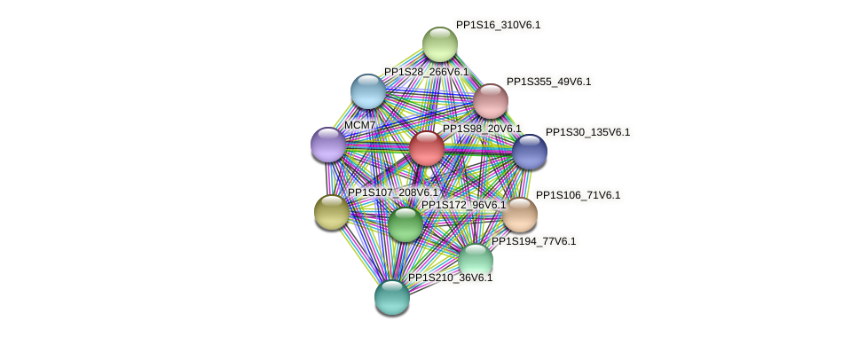 PP1S98_20V6.1 protein (Physcomitrella patens) - STRING interaction network