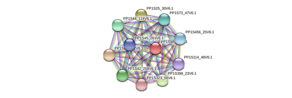 PP1S98_21V6.1 protein (Physcomitrella patens) - STRING interaction network