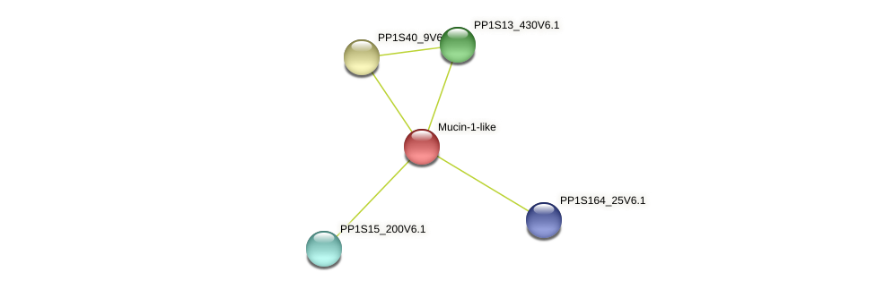 PP1S98_29V6.2 protein (Physcomitrella patens) - STRING interaction network