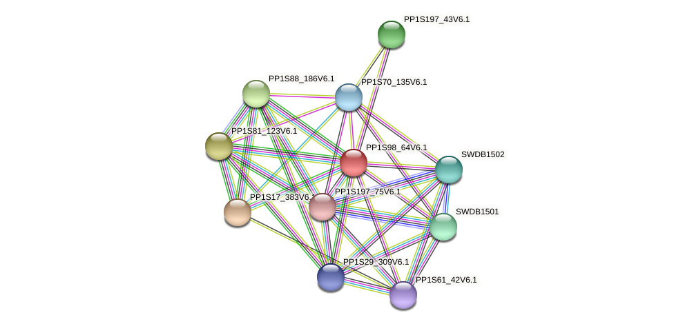 PP1S98_64V6.1 protein (Physcomitrella patens) - STRING interaction network