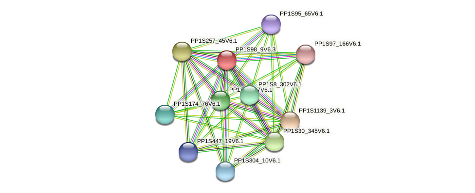 PP1S98_9V6.1 protein (Physcomitrella patens) - STRING interaction network