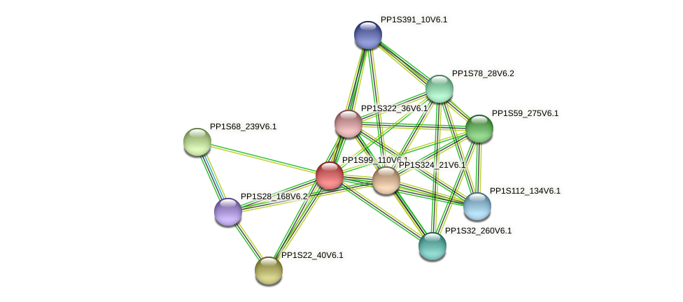 PP1S99_110V6.1 protein (Physcomitrella patens) - STRING interaction network