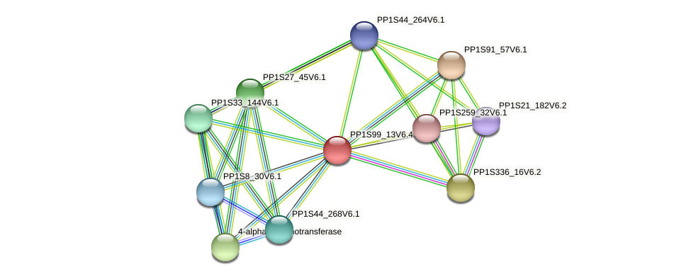 PP1S99_13V6.4 protein (Physcomitrella patens) - STRING interaction network