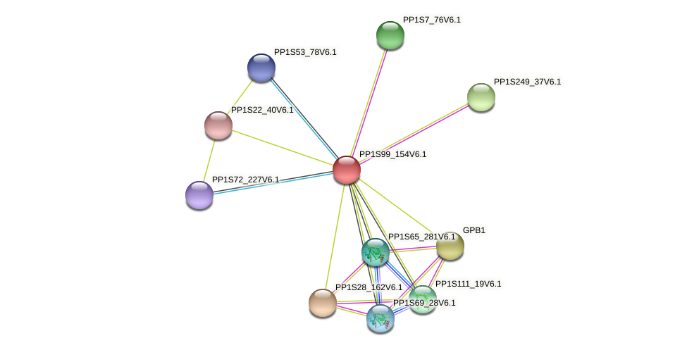 PP1S99_154V6.1 protein (Physcomitrella patens) - STRING interaction network