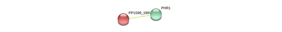 PP1S99_189V6.2 protein (Physcomitrella patens) - STRING interaction network