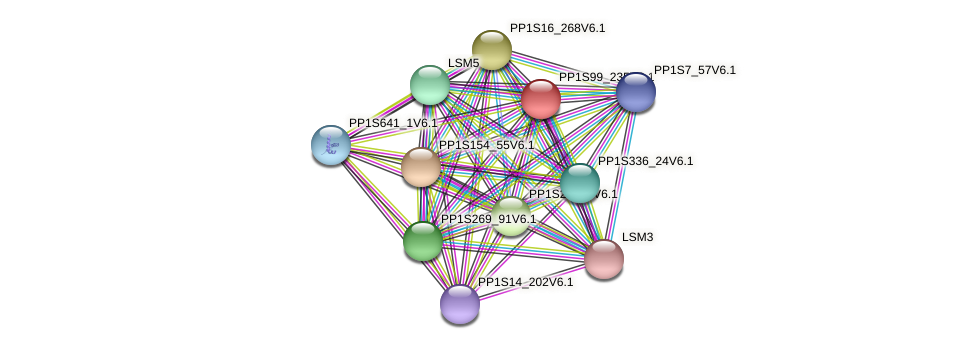 PP1S99_235V6.1 protein (Physcomitrella patens) - STRING interaction network