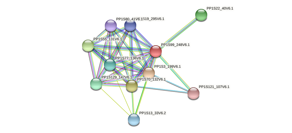 PP1S99_248V6.1 protein (Physcomitrella patens) - STRING interaction network