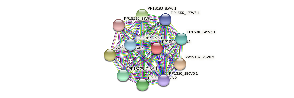 PP1S99_250V6.1 protein (Physcomitrella patens) - STRING interaction network