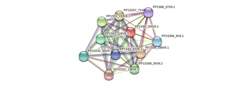 PP1S99_254V6.1 protein (Physcomitrella patens) - STRING interaction network