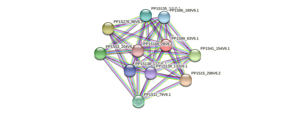 PP1S99_63V6.1 protein (Physcomitrella patens) - STRING interaction network