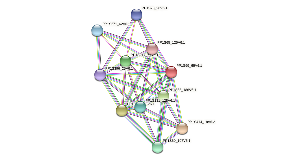 PP1S99_65V6.1 protein (Physcomitrella patens) - STRING interaction network