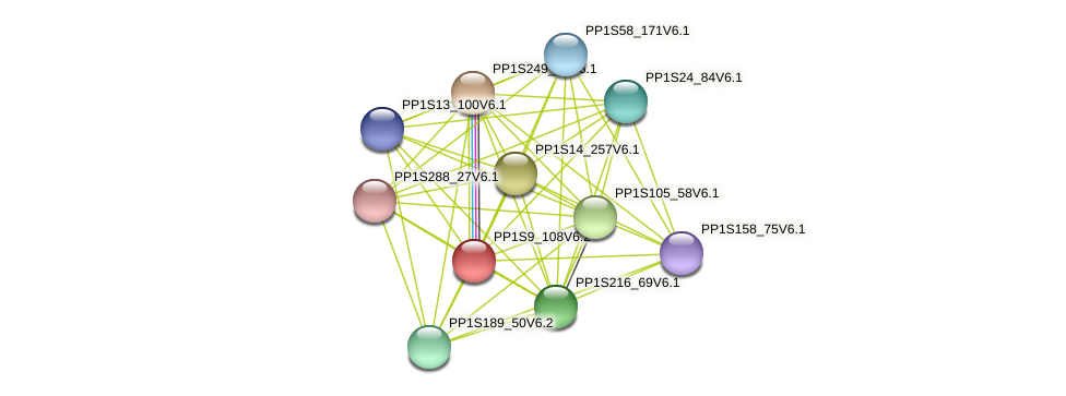 PP1S9_108V6.2 protein (Physcomitrella patens) - STRING interaction network