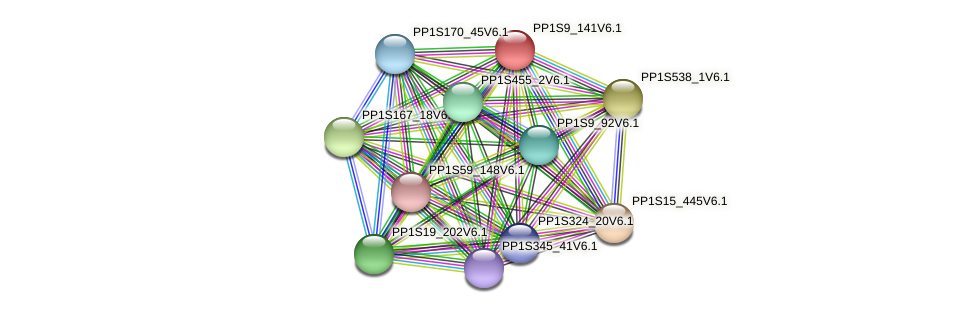 PP1S9_141V6.1 protein (Physcomitrella patens) - STRING interaction network