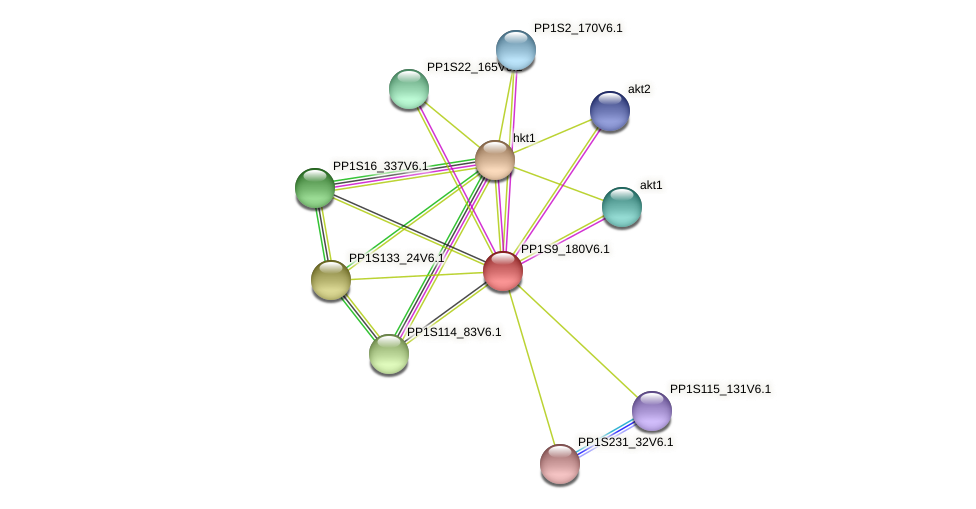 PP1S9_180V6.1 protein (Physcomitrella patens) - STRING interaction network