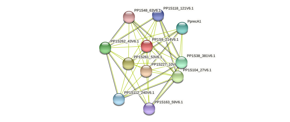 PP1S9_214V6.1 protein (Physcomitrella patens) - STRING interaction network