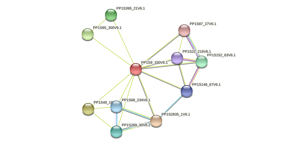 PP1S9_330V6.1 protein (Physcomitrella patens) - STRING interaction network