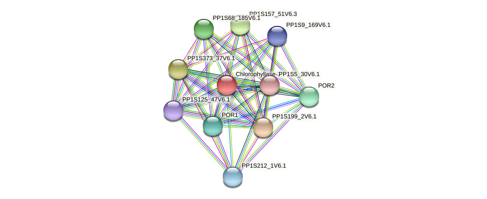 PP1S9_331V6.1 protein (Physcomitrella patens) - STRING interaction network