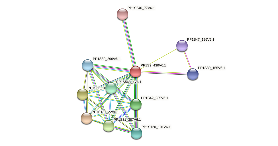 PP1S9_430V6.1 protein (Physcomitrella patens) - STRING interaction network
