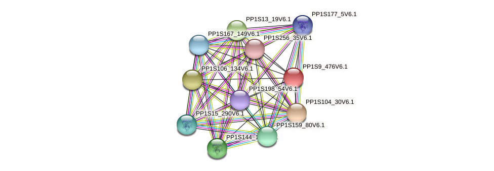 PP1S9_476V6.1 protein (Physcomitrella patens) - STRING interaction network