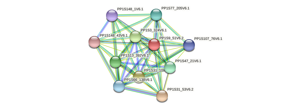 PP1S9_51V6.2 protein (Physcomitrella patens) - STRING interaction network
