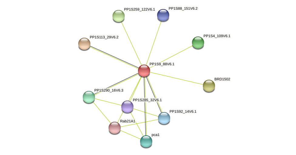 PP1S9_88V6.1 protein (Physcomitrella patens) - STRING interaction network