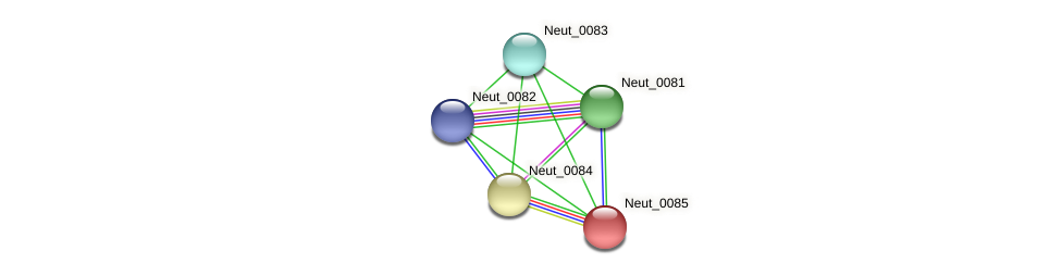 Neut_0085 protein (Nitrosomonas eutropha) - STRING interaction network