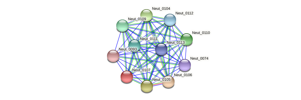 Neut_0107 protein (Nitrosomonas eutropha) - STRING interaction network