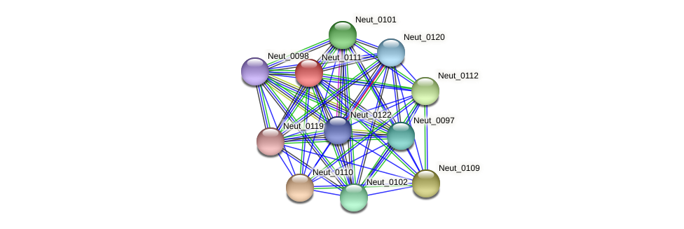 Neut_0111 protein (Nitrosomonas eutropha) - STRING interaction network