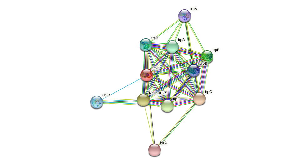 trpD protein (Nitrosomonas eutropha) - STRING interaction network