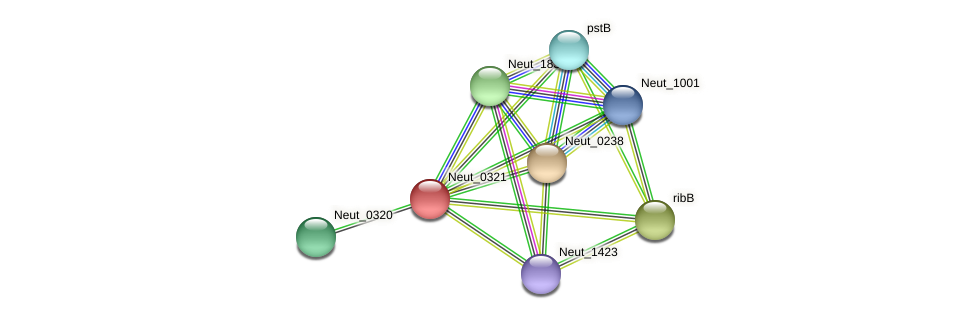 Neut_0321 protein (Nitrosomonas eutropha) - STRING interaction network