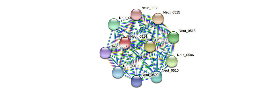 Neut_0514 protein (Nitrosomonas eutropha) - STRING interaction network