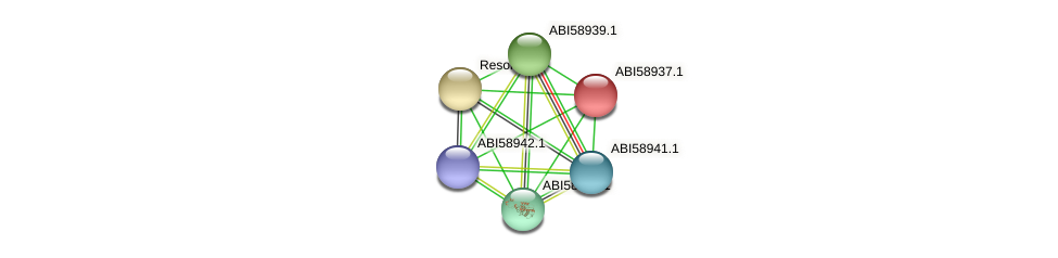 Neut_0665 protein (Nitrosomonas eutropha) - STRING interaction network