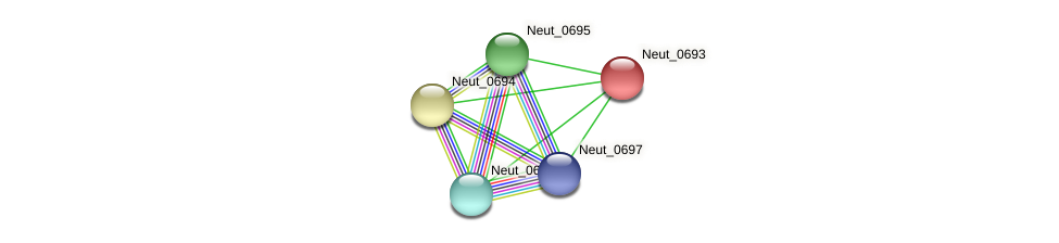 Neut_0693 protein (Nitrosomonas eutropha) - STRING interaction network