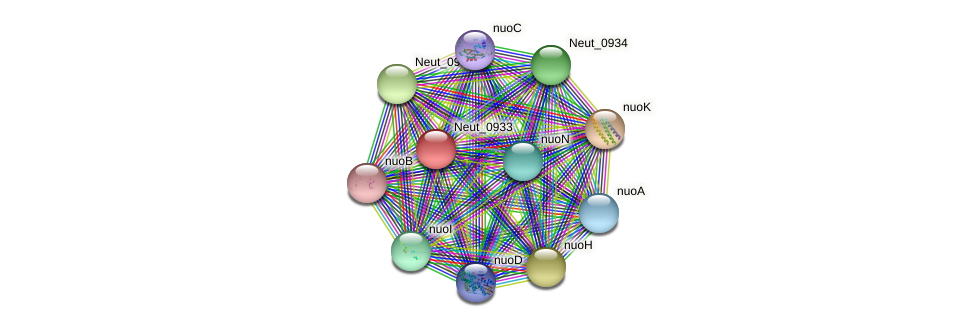 Neut_0933 protein (Nitrosomonas eutropha) - STRING interaction network