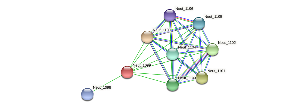 Neut_1099 protein (Nitrosomonas eutropha) - STRING interaction network