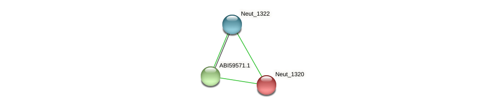 Neut_1320 protein (Nitrosomonas eutropha) - STRING interaction network