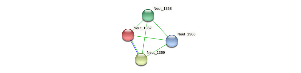 Neut_1367 protein (Nitrosomonas eutropha) - STRING interaction network