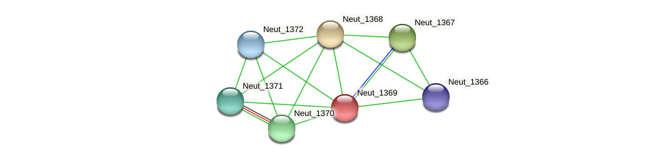 Neut_1369 protein (Nitrosomonas eutropha) - STRING interaction network