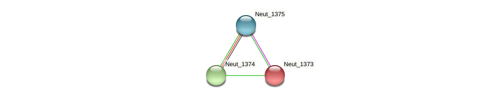 Neut_1373 protein (Nitrosomonas eutropha) - STRING interaction network