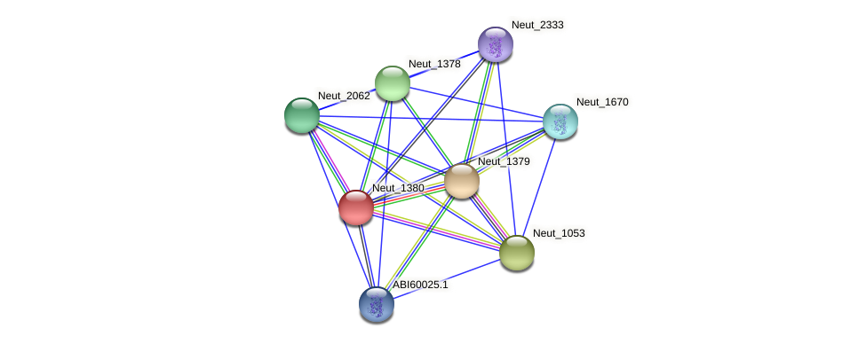 Neut_1380 protein (Nitrosomonas eutropha) - STRING interaction network