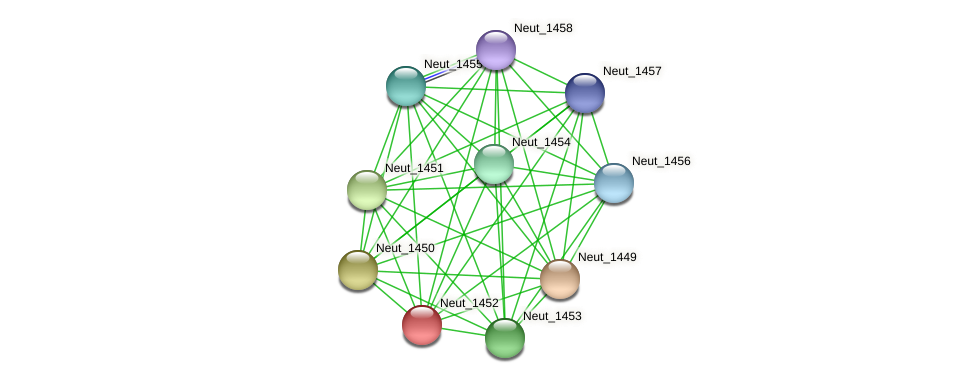 Neut_1452 protein (Nitrosomonas eutropha) - STRING interaction network