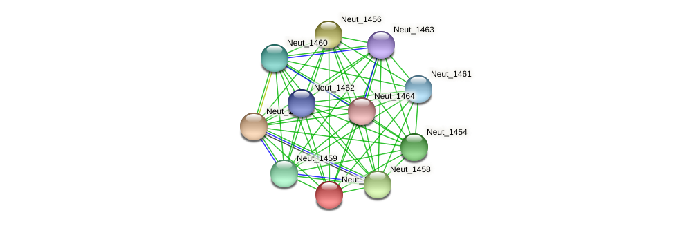 Neut_1457 protein (Nitrosomonas eutropha) - STRING interaction network