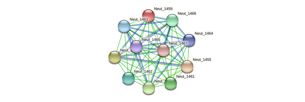 Neut_1459 protein (Nitrosomonas eutropha) - STRING interaction network