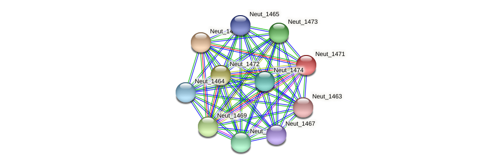 Neut_1471 protein (Nitrosomonas eutropha) - STRING interaction network