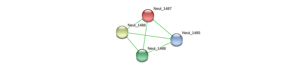 Neut_1487 protein (Nitrosomonas eutropha) - STRING interaction network