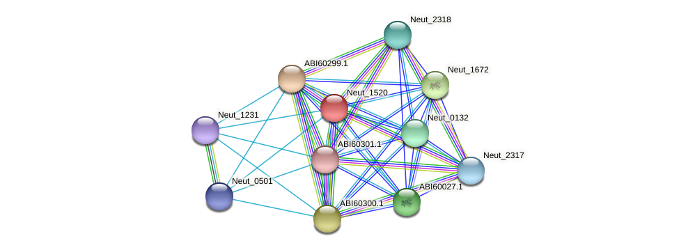 Neut_1520 protein (Nitrosomonas eutropha) - STRING interaction network